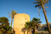 Defensive Tower With Palms