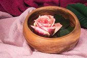 Pink Rose In Wooden Cup