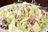 Waldorf Salad Closeup