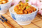 Hot Tofu With Rice