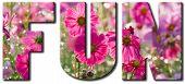 Fun Pink Flowers