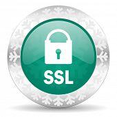 ssl green icon, christmas button