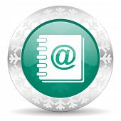 address book green icon, christmas button