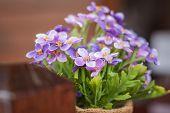 Purple Fake Flower Pot