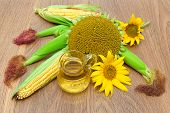 Mature Sunflowers, Corn And Oil In A Glass Jar Close-up On Wooden Background