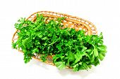 Parsley In A Basket