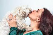 Bichon Dog Kissing A Women