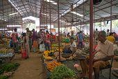 Vegetable vendor in the market