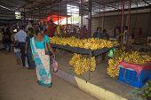 Banana vendor in the market