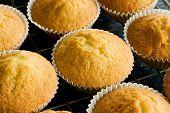 Homemade Baked Buns