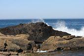 Ancient Volcanic Rock