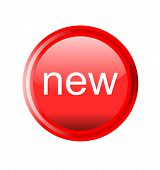 button new