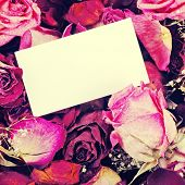 Card With Dried Roses