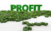 Profit and earnings