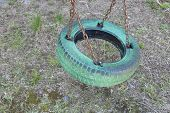 foto of tire swing  - Old green painted tire swing hanging in park - JPG