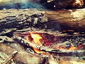image of bonfire  - Bonfire in the forest on holiday, background ** Note: Visible grain at 100%, best at smaller sizes - JPG
