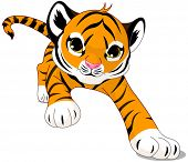 picture of tiger cub  - Illustration of running cute baby tiger - JPG