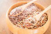 pic of whole-grain  - Organic multi whole grain of jasmine rice - JPG