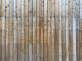 picture of solids  - The texture and pattern of Bamboo - JPG