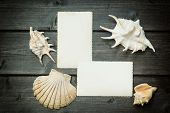 Постер, плакат: Vintage Photo Of Blank Old Photos And Seashells
