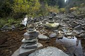 Stacks of cairns in a stream.