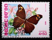 Cabo Verde - por volta de 1982: Um escudo de 4, selo de 50 centavo, imprimido em Cabo Verde mostra o Mala de borboleta