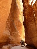 Horse Carriage In A Gorge, Siq, Petra, Jordan