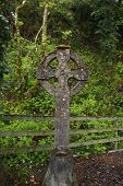 stock photo of irish moss  - an old celtic cross in waterford ireland