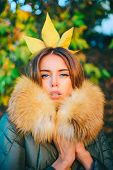 Autumn Princess. Fall Season Outfit. Modern Fashion Outfit. Gorgeous Pretty Woman In Furry Coat Fall poster