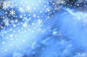 Christmas snow (xmas & winter themes & bkgd series)