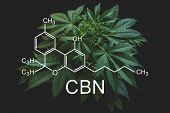 Cbn Formula, Cannabinoid . Medical Marijuana, Growing Marijuana, Hemp Industry, Despancery Business. poster