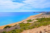 Amazing View Of The Golden Beach In Karpas Peninsula, Turkish Northern Cyprus Taken On A Sunny Summe poster