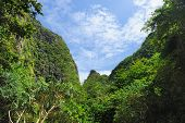 Beautiful tropical nature at  Phi Phi Ley island, the exact place where