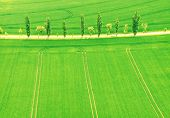 Striped Field. Fields From The Air. Fields Aerial Photo. Aerial Photography Of Green Fields poster