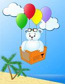 Bear travelling