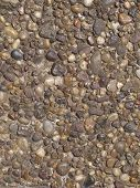 Small brown stones