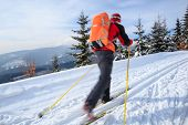 Cross-country skiing: young man cross-country skiing on a lovely sunny winter day (motion blur techn