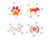 Pets Icons. Cat Paw With Clutches Sign. Winner Laurel Wreath And Medal Symbol. Pets Food. Random Dyn poster