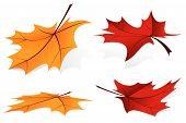 Falling Leafs Icon Set