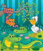 pic of crocodilian  - Swamp theme image 1  - JPG