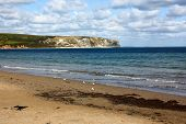 Swanage Beach And Dorset Cliffs