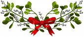 Mistletoe With Ribbon