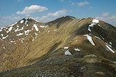 Scotland, Northern Part Of Glen Shiel
