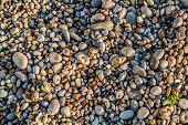 beautiful pebbles stones  of etretat beach in seine maritime normandie france