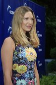 LOS ANGELES - AUG 18:  Anna Torv at the Oceana's 6th Annual SeaChange Summer Party at the Beverly Hilton Hotel on August 18, 2013 in Beverly Hills, CA
