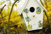 Birdhouse/birdbox On A Tree Branch