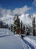 Scenic Snowshoeing