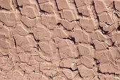 pic of stomp  - Tire tracks on a dirt road - JPG