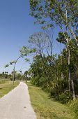 Path At Trail