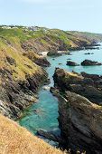 Rugged coast of England Whitsand bay Cornwall